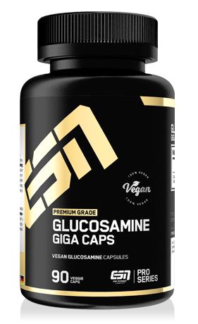 esn glucosamine giga caps 90 kapseln house of protein. Black Bedroom Furniture Sets. Home Design Ideas